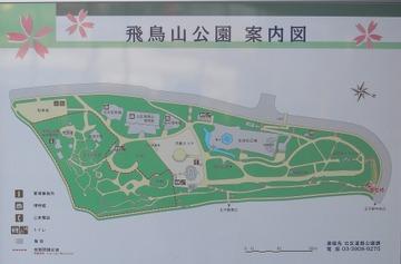 100130asukayama2_2
