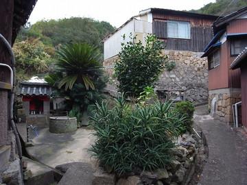 131102shishijima15