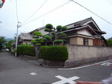140621yamamoto20_2