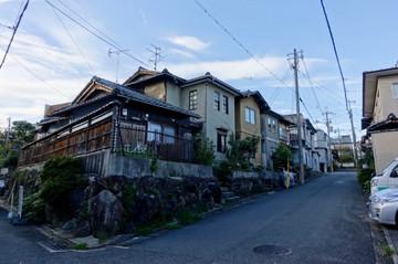 180922kamikashiwanopark0