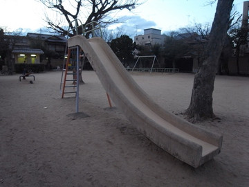 160206murasakinoyanagi16