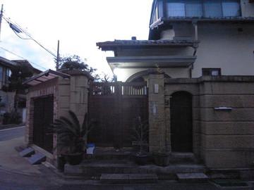 160206murasakinoyanagi19