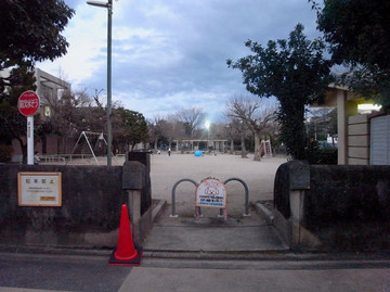 160206murasakinoyanagi2