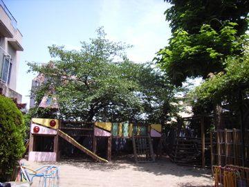 060624kitanopark2