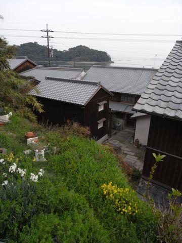 080405sakoshi8
