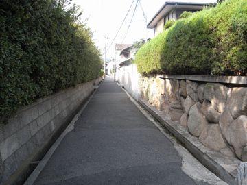 080914ishibashi5