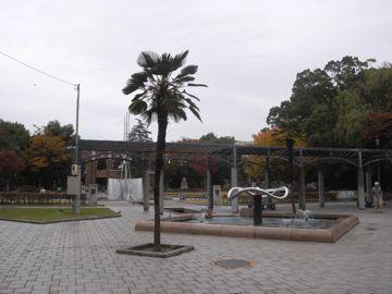 081108suwapark5