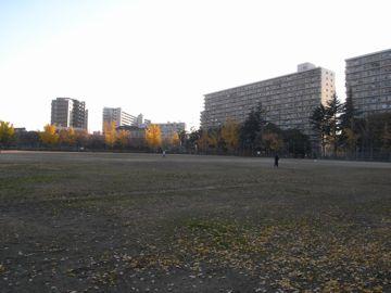 081207shimofukushima1