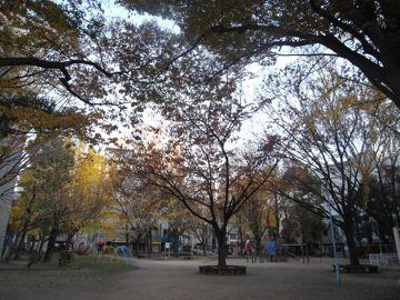 081207fukushimapark1