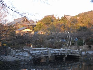 090111maruyama2