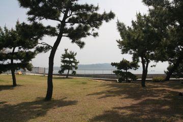 090502nakazaki2