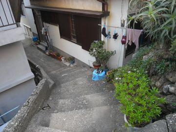 090412kamishima2