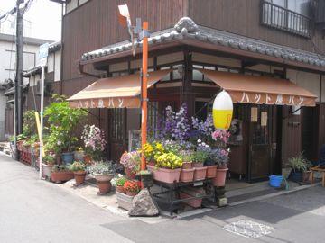 090419sumiyoshie14