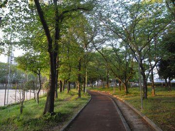 090429ashiharapark14