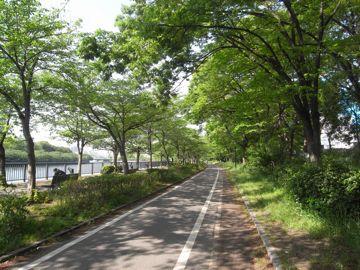 090509sakurapark2