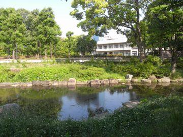 090509sakurapark4