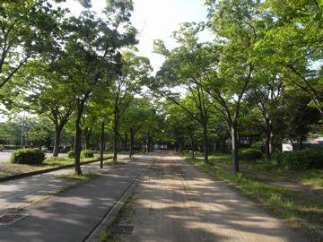 090509sakurapark21