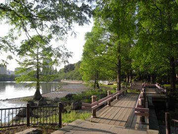090509sakurapark29