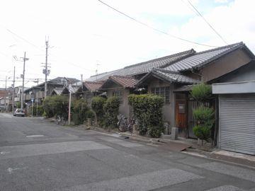 090808asakayama10