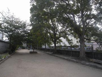 090921nakahama3