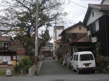 091213nishihirano12