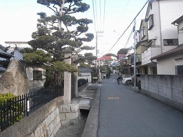 100116saigoku6
