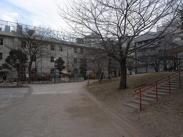 100128sakamotopark4