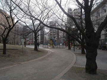 100128sakamotopark5
