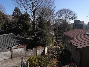100130bunkamura12
