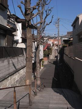 100130bunkamura5