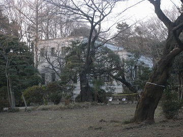 100130asukayama15