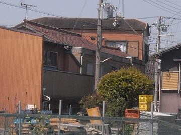 100429shikama16