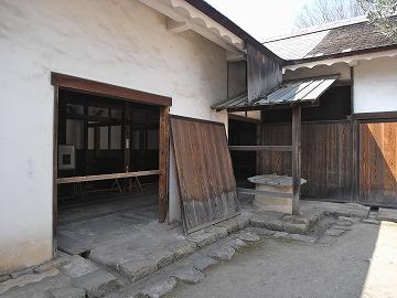 100502hikonejo7