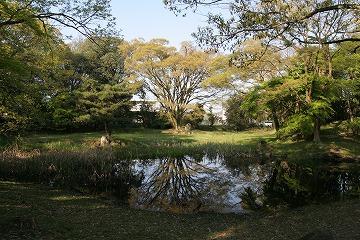 20100502biwako11