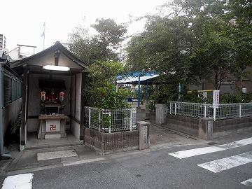 100710sakura1