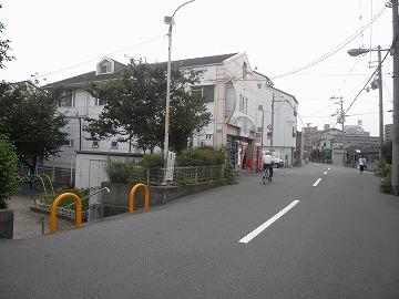 100710sakura14