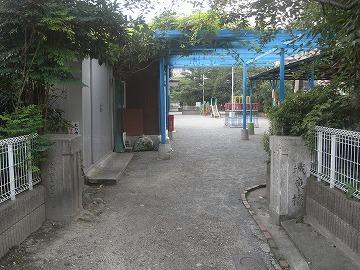 100710sakura2