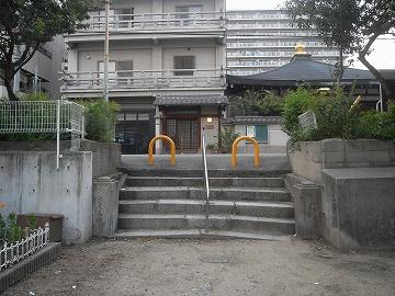 100710sakura4
