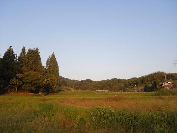 101106kaseyama13