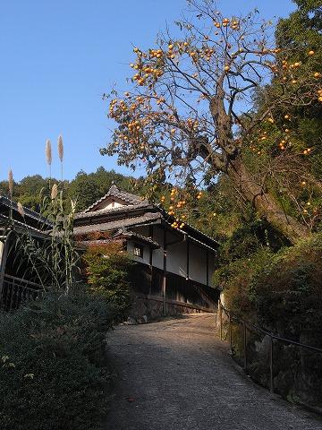 101106kaseyama3