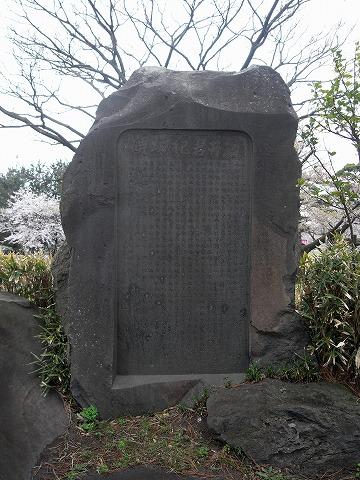 110502hiyoriyama5