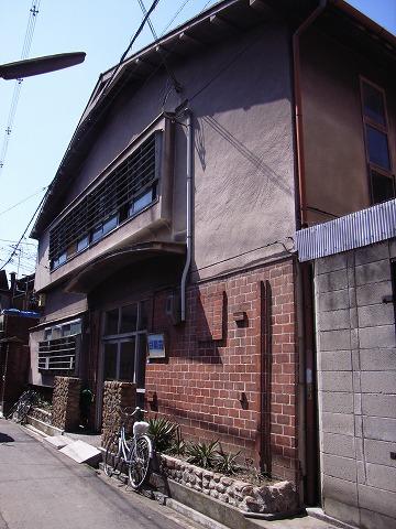 060325shiragikuso1