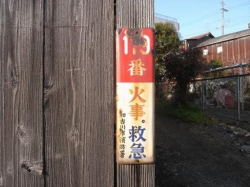 120122kininaru7_2