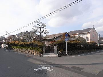 120128sakuragaoka1