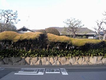 120128sakuragaoka17