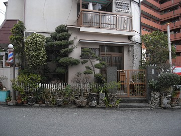 120226fukaehachi3