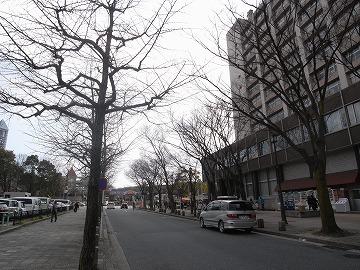 120311higashiyamakoen1_3