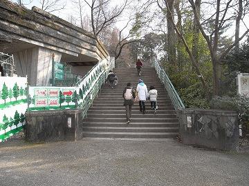 120311shokubutsuen18