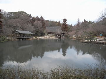120311shokubutsuen20