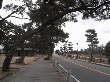 120226ashiyapark1